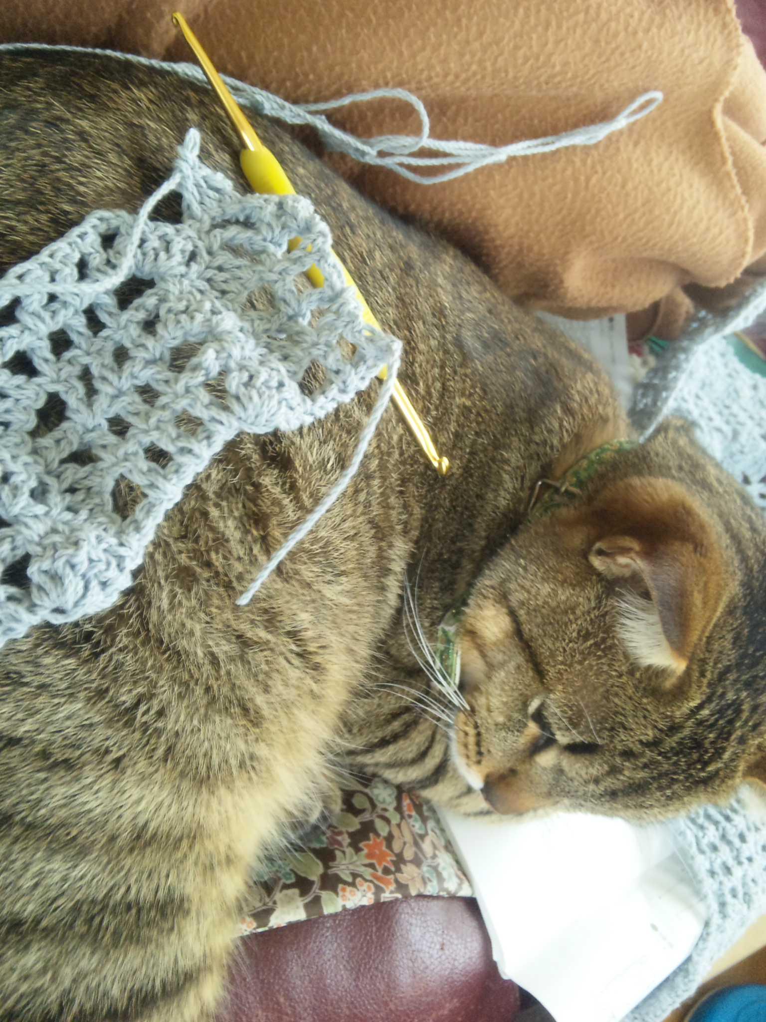 編んでる横で