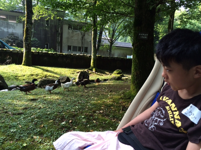 連合キャンプ