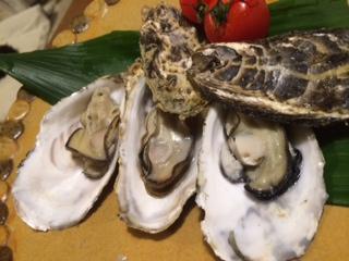 神戸の山奥で坂越の牡蠣
